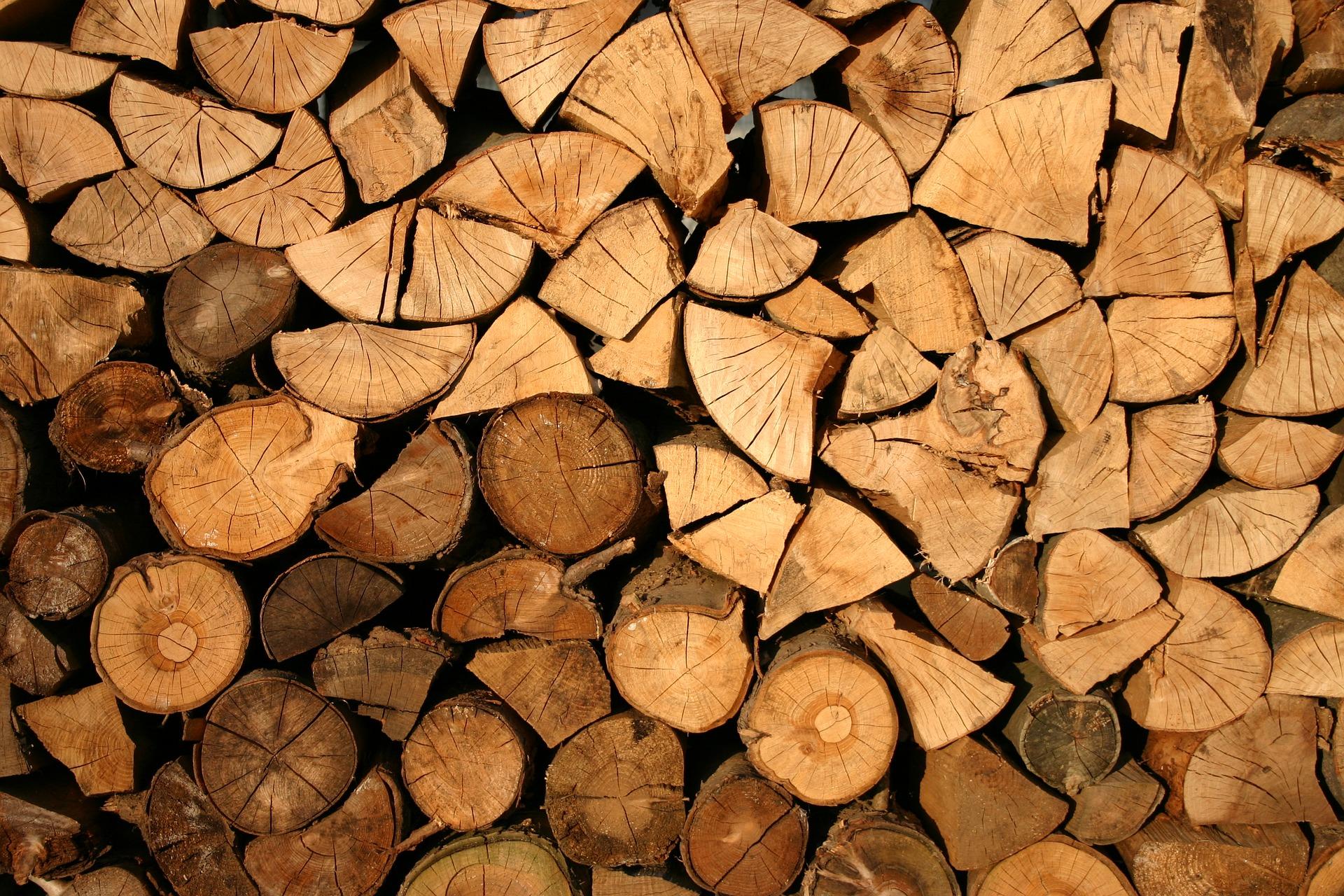 Obrázek dřeva